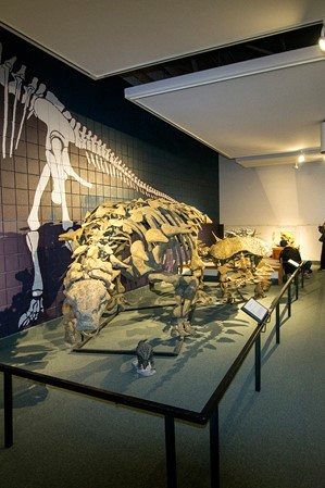how-to-experience-utahs-dinosaur-history-at-the-prehistoric-museum-in-price-01-jenna-herzog