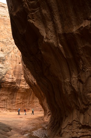 web2000_paththroughcanyons_robbersroost_andrew-burr__burr052319_126
